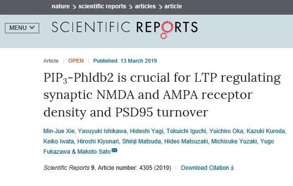 PIP3Phldb2.jpg